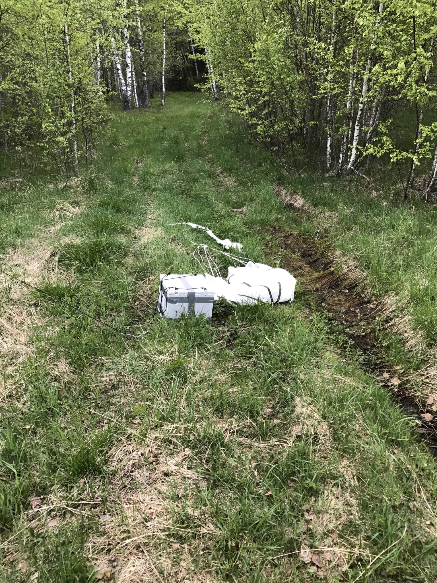 At long last, Raffaele Gradini spotted the payload in a patch of meadow. Photo: Skoltech.