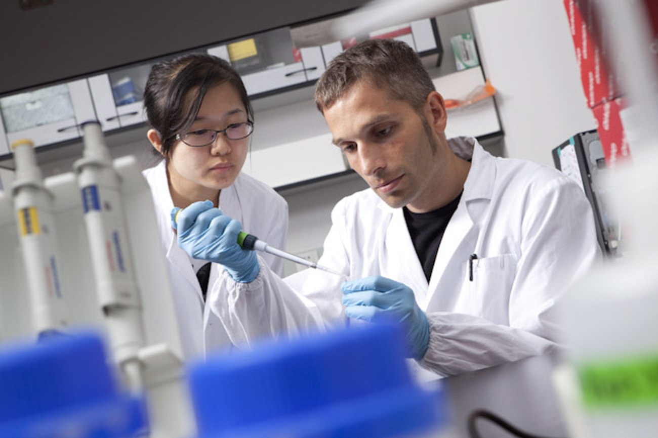 Khaitovich and one of his researchers at work in his lab. Photo: Skoltech.