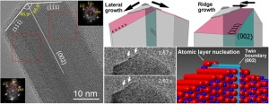 The nanowire growth starts from the atomic layer nucleation at the crystal defect (twin boundary) and continues forming a long range ordering along the defect. The figures show TEM images revealing the twin boundary defects in the nanowire crystal and the mechanism of its layer-by-layer growth (Source: Nano Letters. Article ASAP DOI: 10.1021/nl502687s).