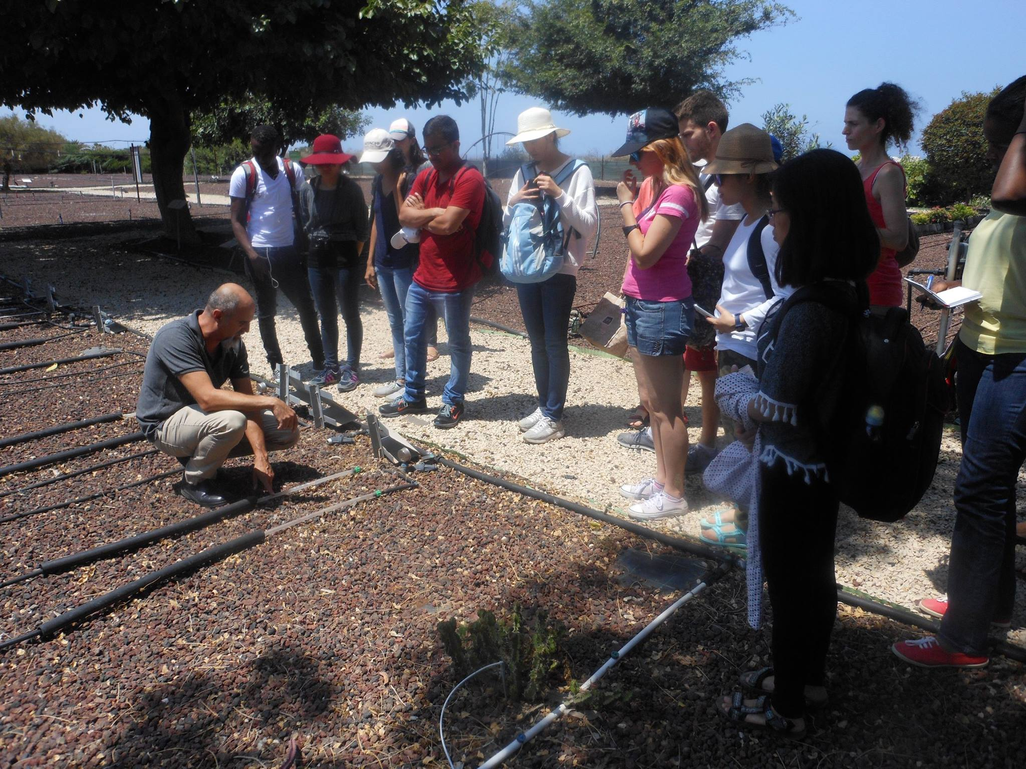Field trip at kibbutz Shfayim