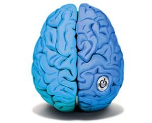 1120_mz_brain