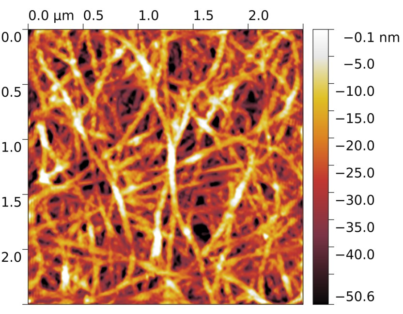 Atomic force microscopy image of the surface of a carbon nanotube film. The fragment seen on the image is 2.5 by 2.5 micrometers. The false color bar indicates the penetration depth of the microscope tip. Image courtesy of the researchers.