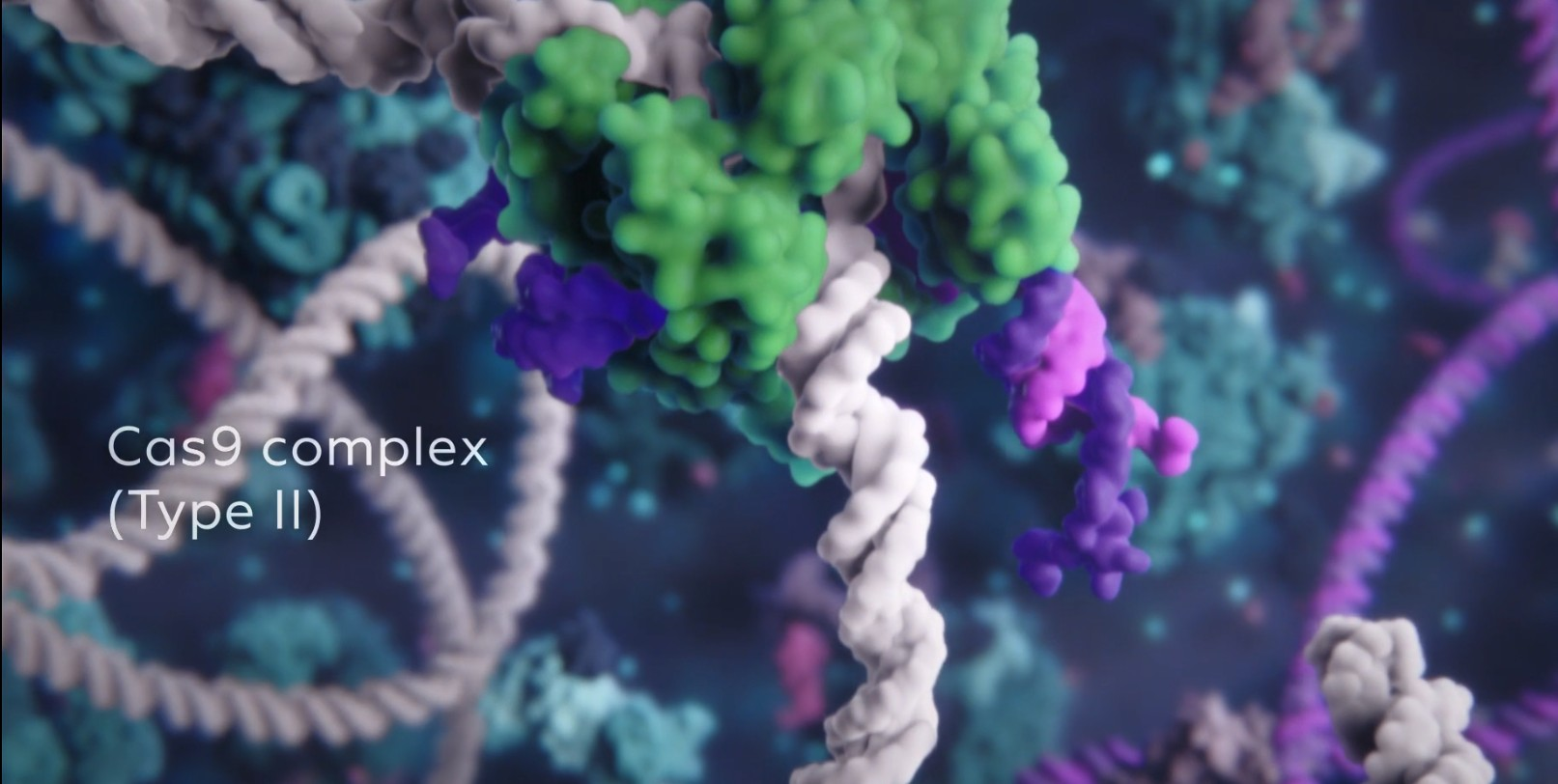 Another screen grab from the Skoltech/Visual Science video. Image: Visual Science.