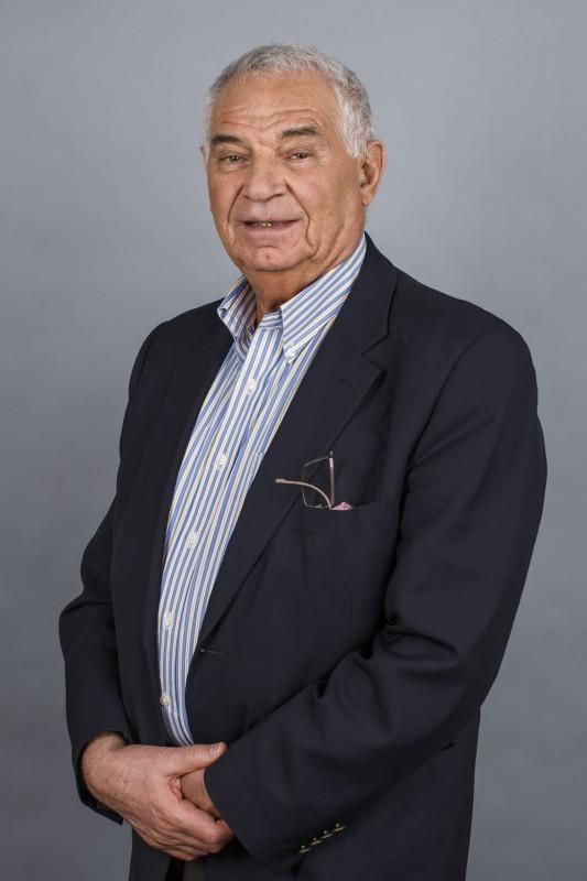 Руководитель исследования, профессор Сколтеха Владимир Зельман.