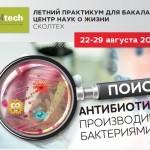 snimok-ekrana-2018-07-12-v-15-38-56