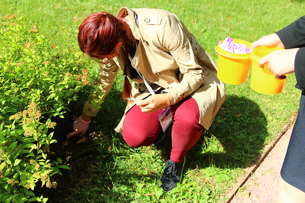 Picking soil samples around Skoltech. Photo: Yulia Gordeeva.