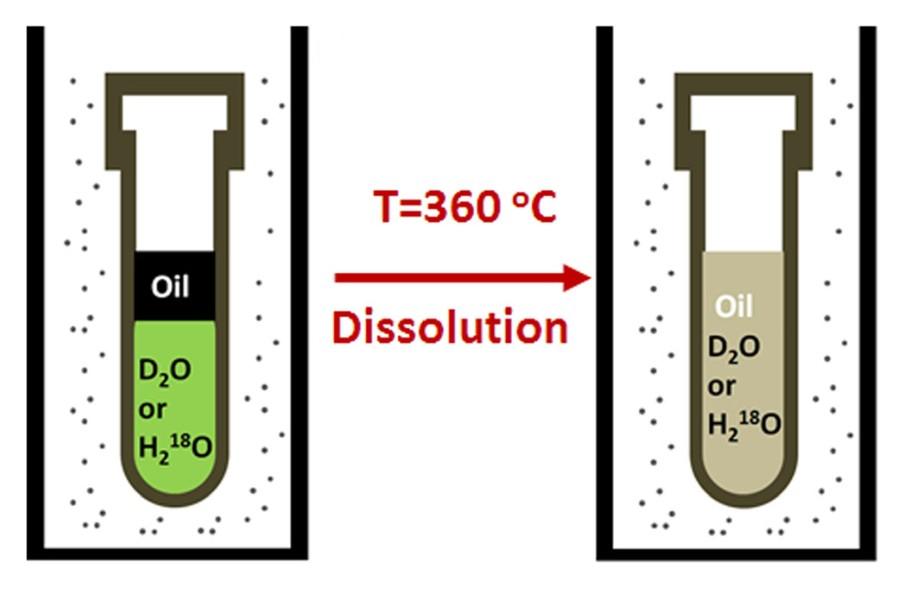 Рисунок 2. Процесс растворения нефти в перегретой воде.