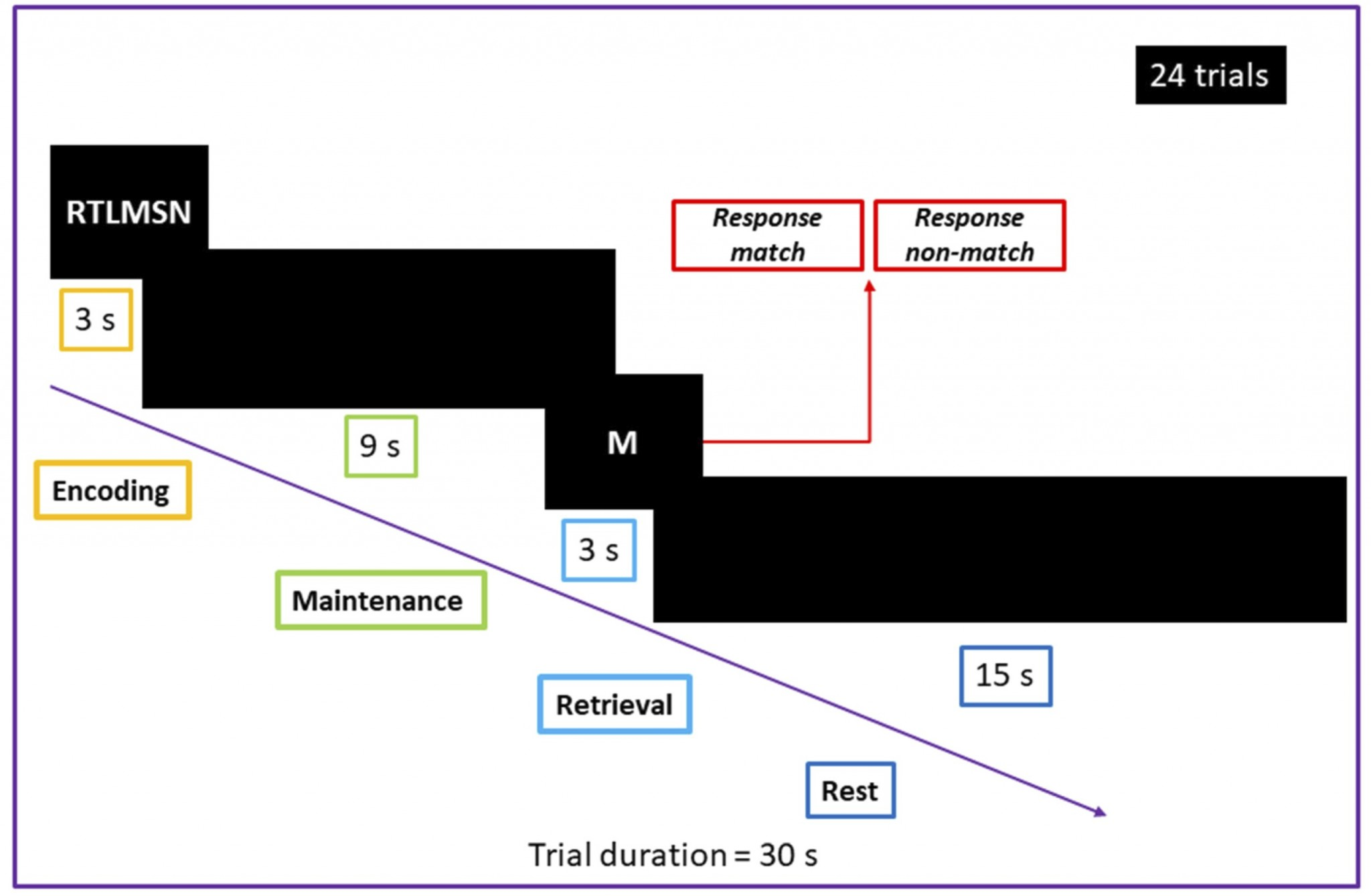 fMRI paradigm with the modified Sternberg task used for individualized determination of simulation target