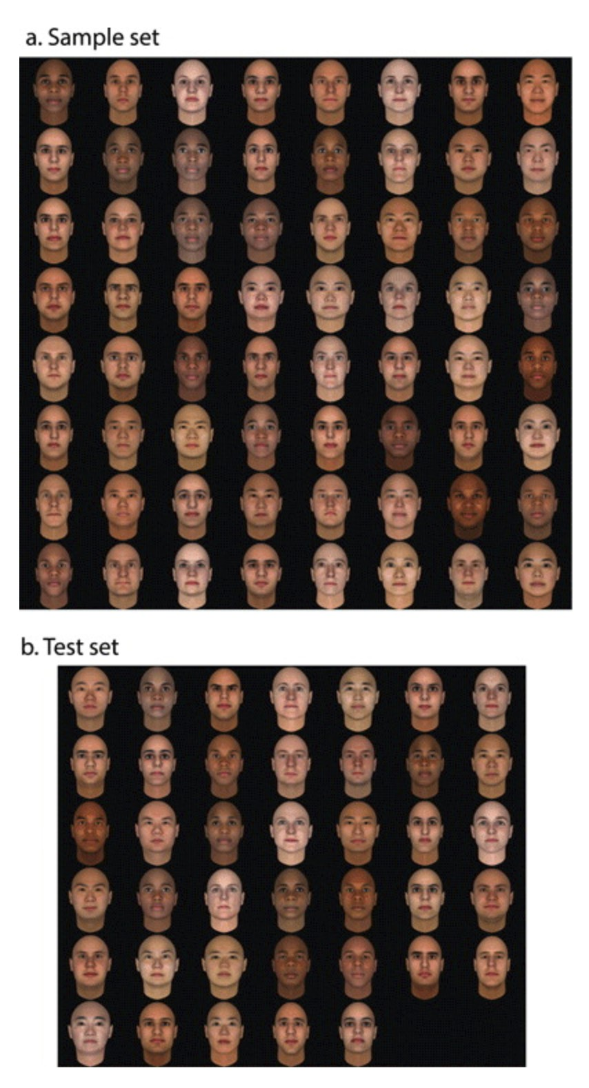 Face sets used to examine the tensor decomposition algorithm. (a) Sample set. Shows 64 out of 128 faces serving as input to the algorithm to create the tensorfaces. (b) Test set: A different set of faces to evaluate properties of the tensorfaces.