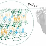 boride-wb5-for-pdc