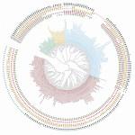 snimok-ekrana-2020-08-11-v-10-47-39