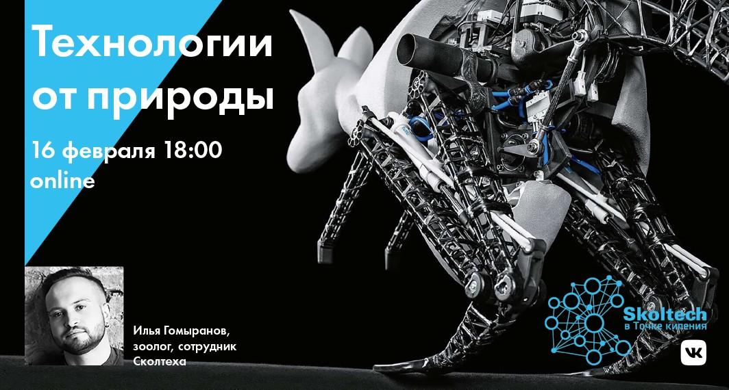 skoltech_tochka-kipeniya_2_1064x570-rus
