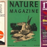 Nature magazine covers (from left - 1929, 1949, 2004)