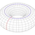 Simple_torus_with_cycles